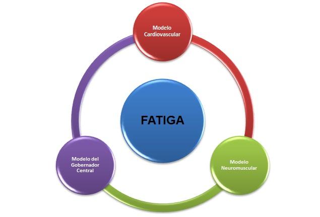 Fatiga: Esquemas para su Estudio y Comprensión