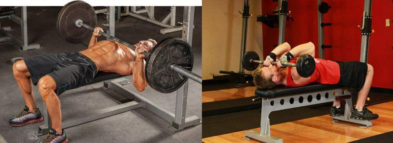 Variar el orden de las combinaciones de ejercicios de una y varias articulaciones afecta de manera diferencial las adaptaciones del entrenamiento de la fuerza