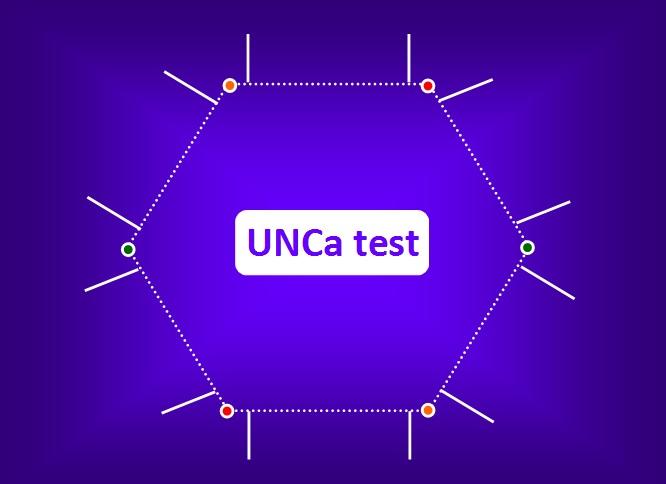 Validación y Publicación del UNCa test