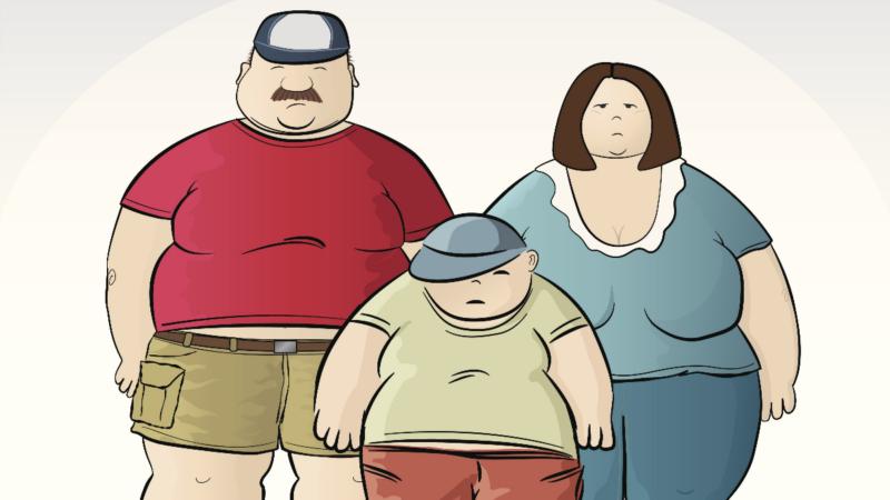 Obesidad: un enfoque multifacético: un problema: diferentes modelos, diferentes ideas y soluciones
