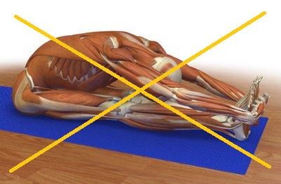 La ADM/flexibilidad en los programas de acondicionamiento físico saludable (PAFS)