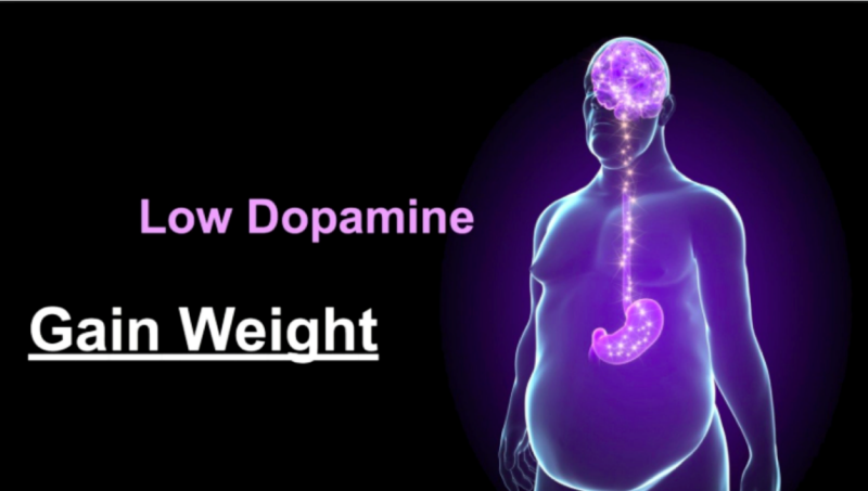 Dopamina y fructosa en la obesidad