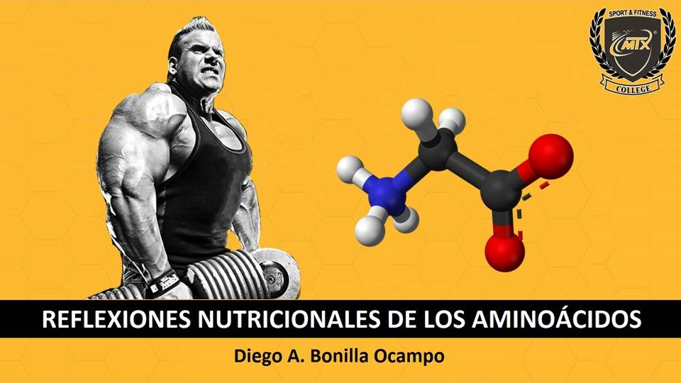 REFLEXIONES NUTRICIONALES DE LOS AMINOÁCIDOS