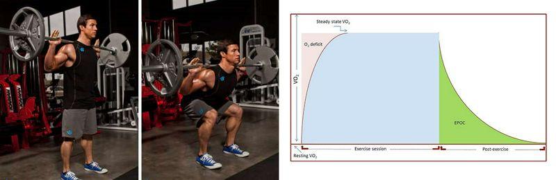 Componente lento de consumo de oxígeno y eficiencia de los ejercicios de fuerza.