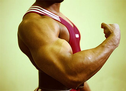 Fuerza Muscular