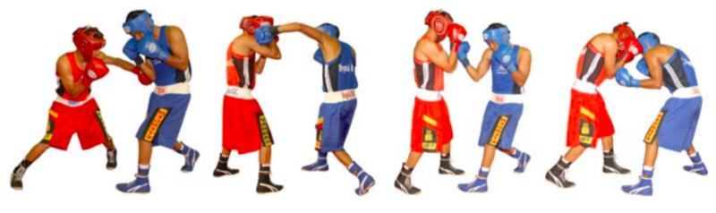 Estructura de la Sesión en Deportes de Combate