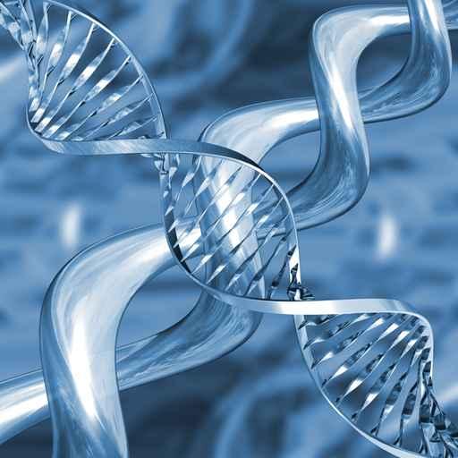Genética, actividad física y deporte para la salud