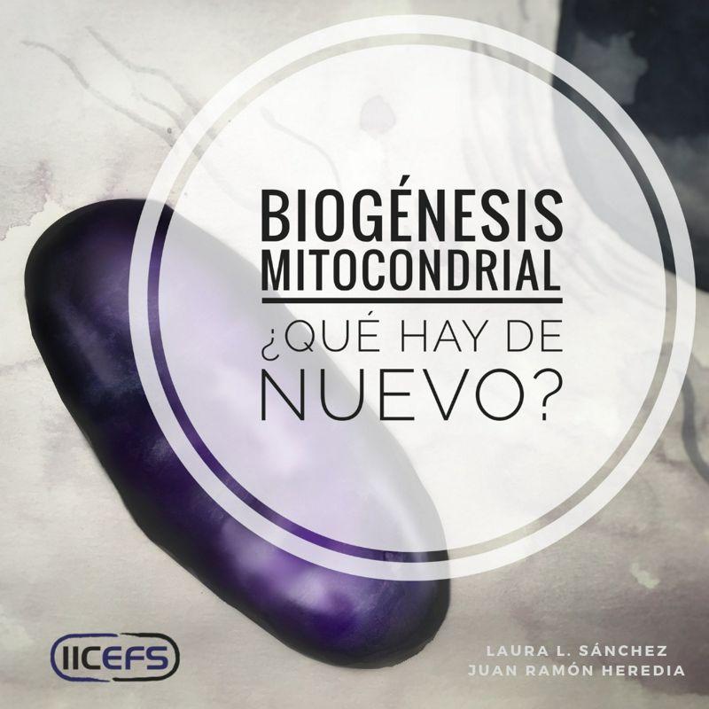 Profundizando en la Biogénesis Mitocondrial: ¿Qué hay de nuevo?