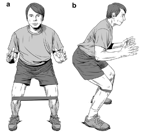 Hip muscle training