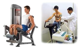 Efecto del Entrenamiento Concurrente de Fuerza y de Resistencia sobre el músculo esquelético y concentraciones hormonales en humanos