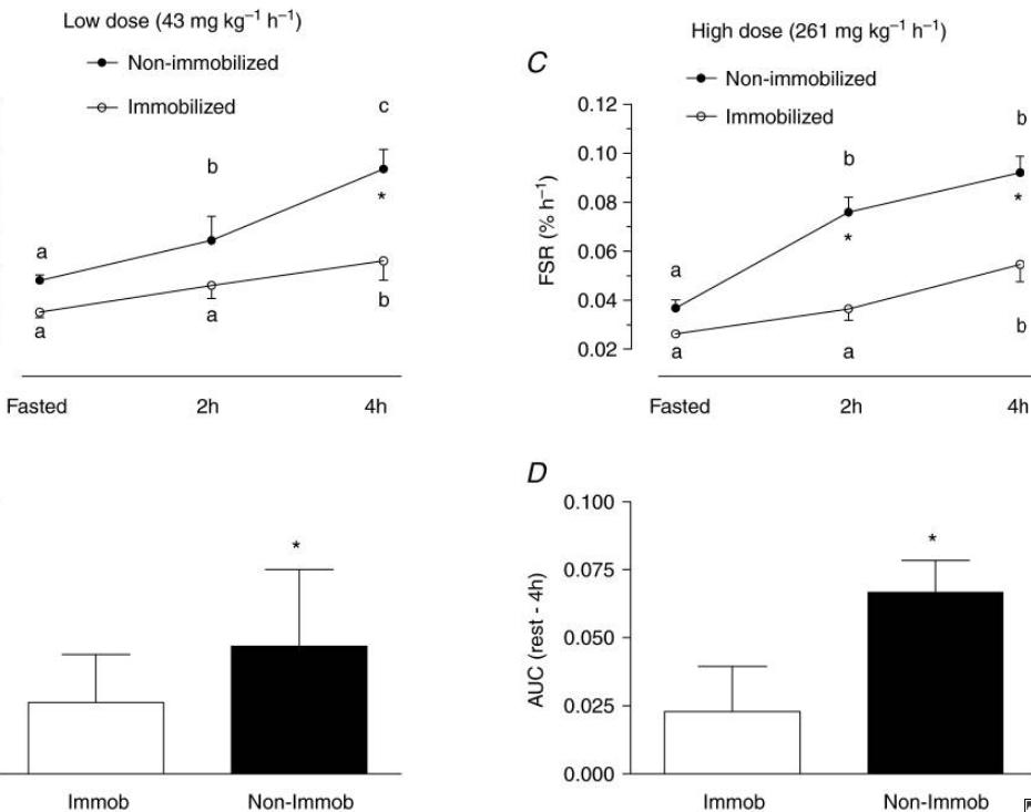 Nutrición proteica frente a la inmovilización por lesión
