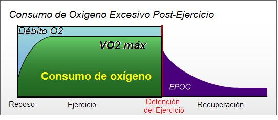 El efecto del volumen de carga de una sesión de entrenamiento de la fuerza sobre el EPOC en varones entrenados en fuerza