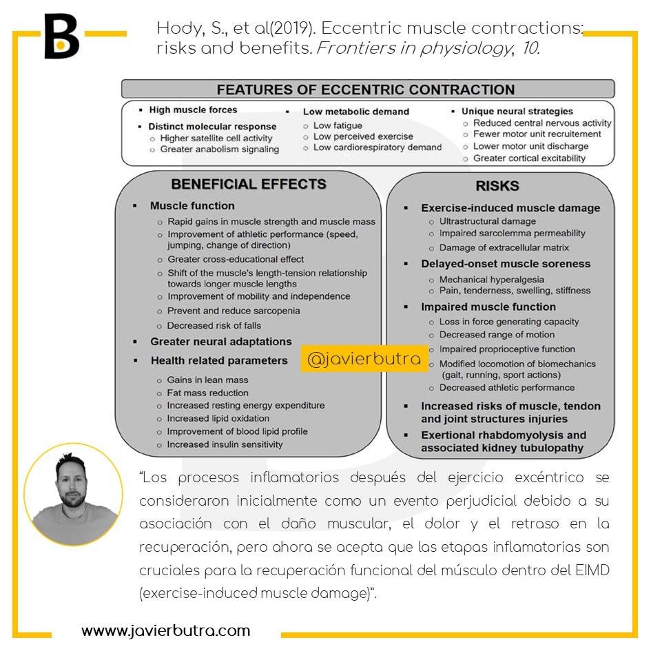 Entrenamiento excéntrico: riesgos y beneficios. Poniendo el foco en la obesidad y el músculo.