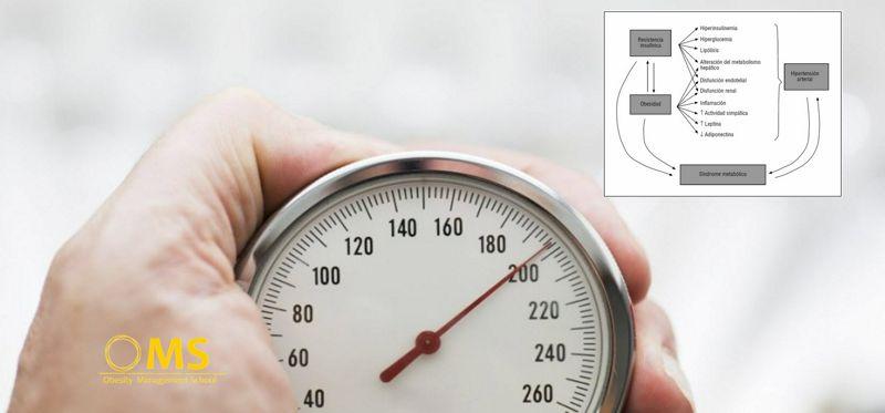 Hipertensión arterial (HTA) y obesidad