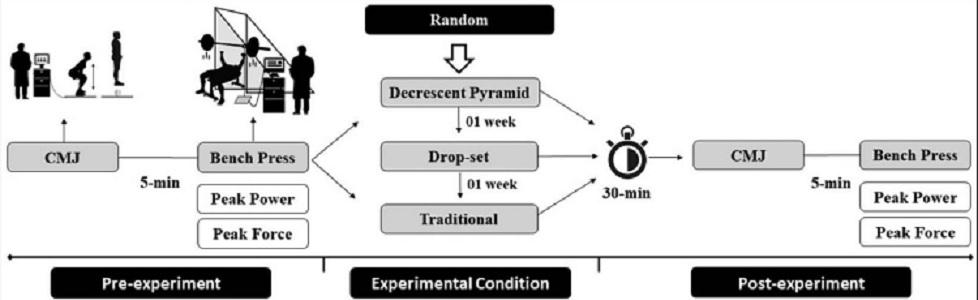 Efecto agudo de los sistemas de serie descendente, tradicional y piramidal en el entrenamiento de la fuerza sobre el rendimiento neuromuscular en adultos entrenados.