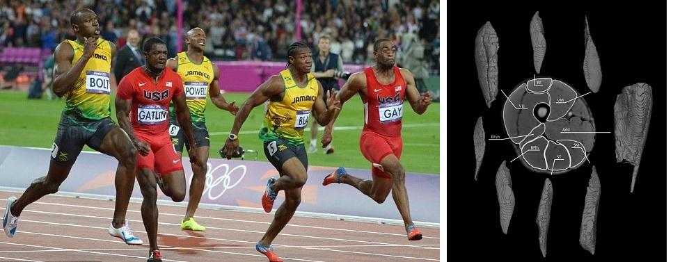 El volumen muscular de los isquiotibiales como indicador del rendimiento del sprint