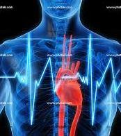 Comparación de la Variabilidad de Frecuencia Cardiaca en Deportistas Jóvenes
