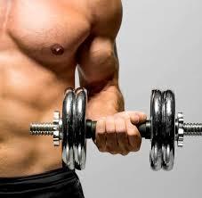 Ejercicios Generales de Musculación