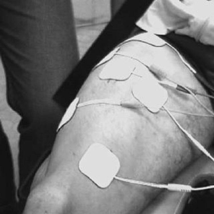 Efectos de la intensidad de entrenamiento en la electroestimulación en el músculo esquelético humano