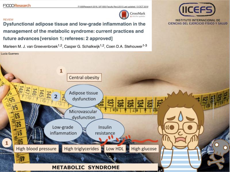 Síndrome Metabólico, tejido adiposo disfuncional, e inflamación de bajo grado