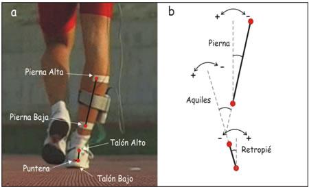 Imagen 18.- Modelo mecánico de la pierna y el pie empleado en el estudio fotogramétrico (a) y criterio de medición de los ángulos de la articulación subastragalina (b).