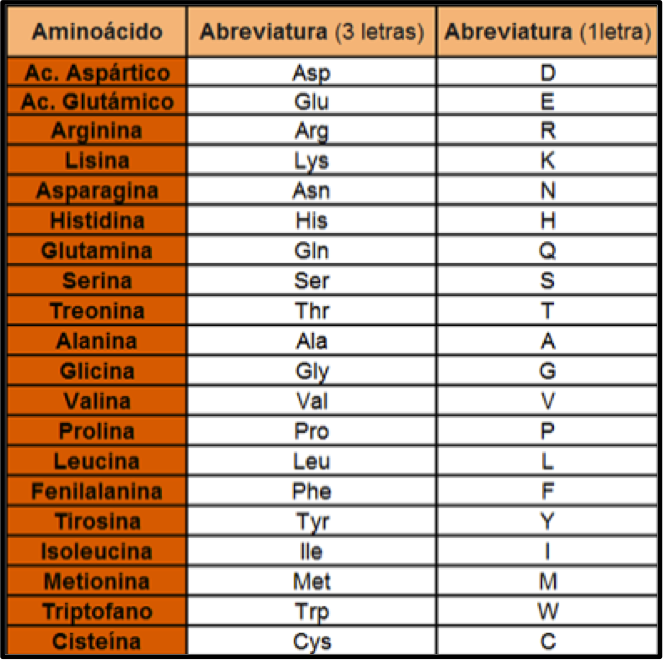 Aminoácidos International Endurance Group