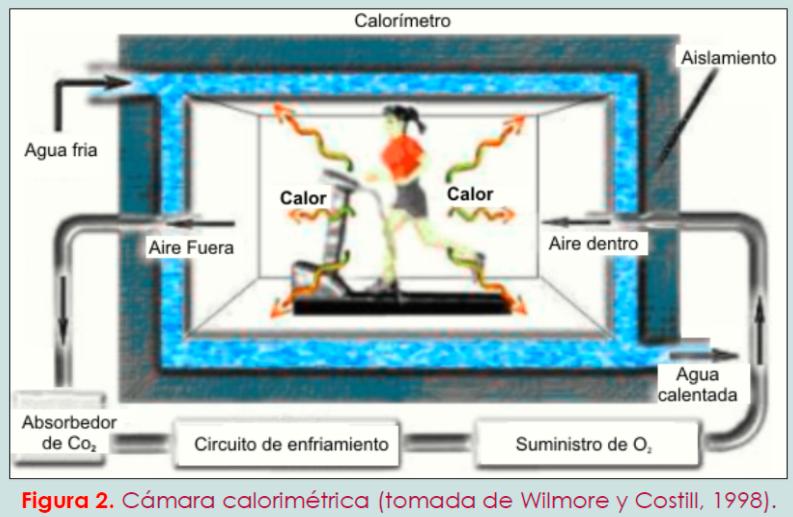 Cámara calorimétrica