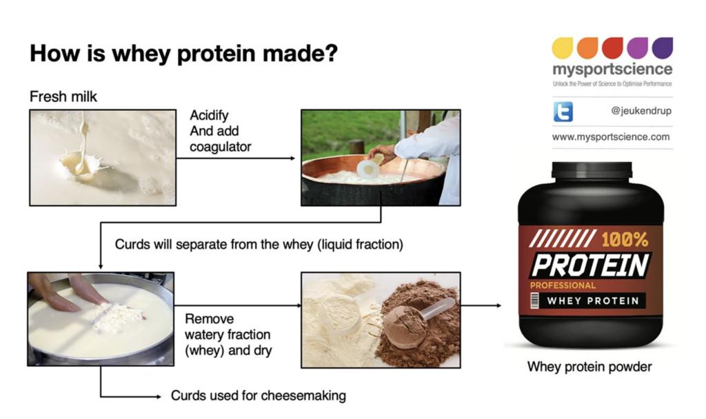 Como se hace la proteína de suero