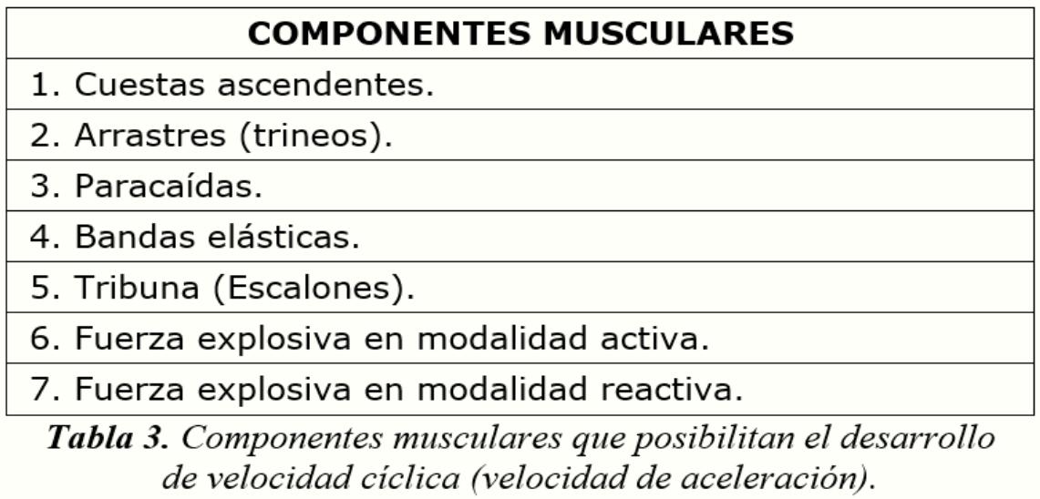 ComponentesMusculares
